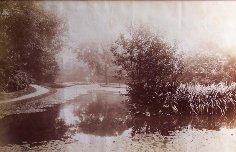 Botanical Gardens, Old
